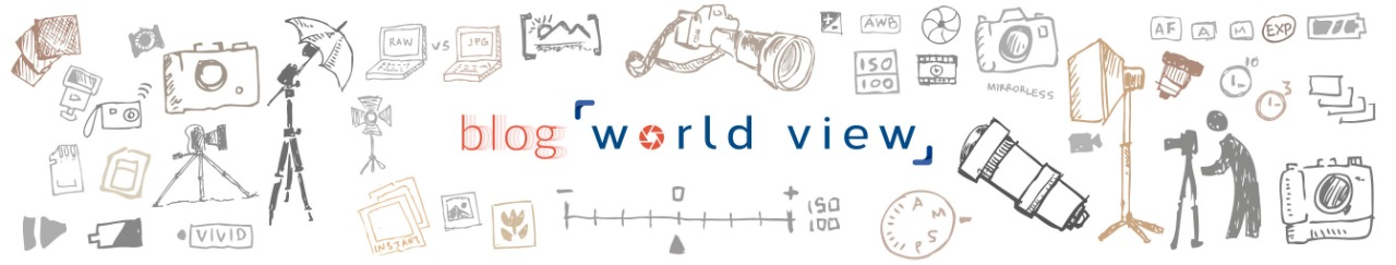 World View - Blog